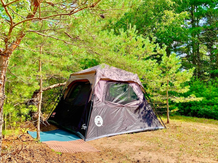 Coleman Stand-Up Tent @ Camp Squid Off The Grid!21