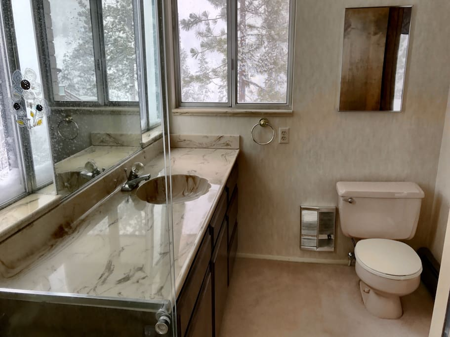 Dual bath with large walk-in shower.