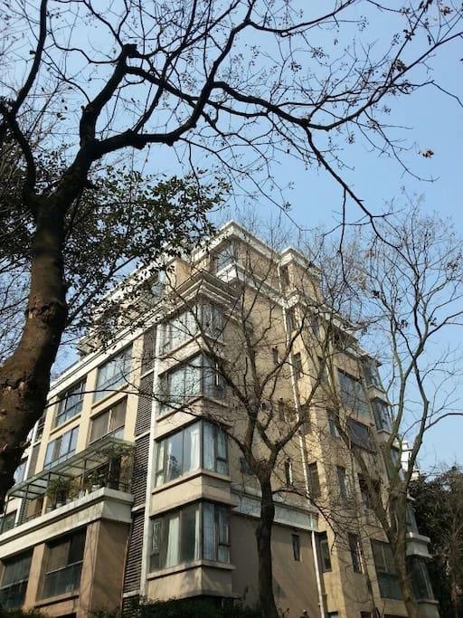 高档小区,我家就在这栋楼上面两层。您住的是上面独立第二层,带花园。