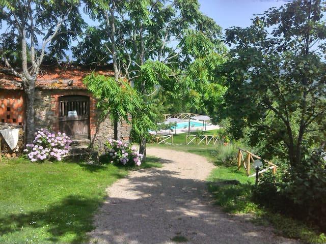 Il Gelsomino, Agriturismo Casa Giannino, Arezzo - Castel Focognano - Lägenhet