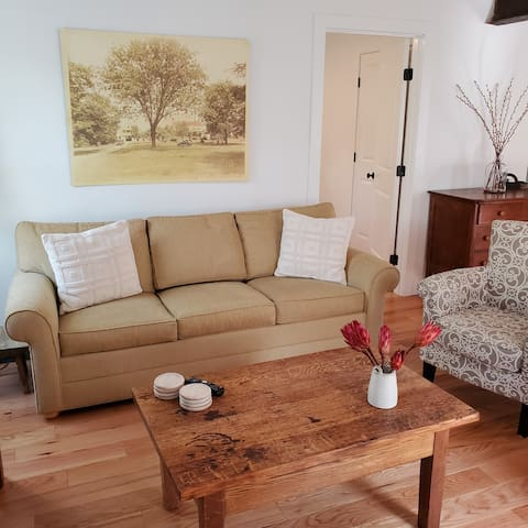 The living room has a queen size sofa bed