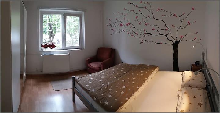 Clean Minimalist Bedroom