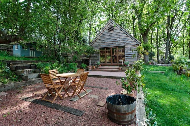 New Forest Woodland Lodge Retreat