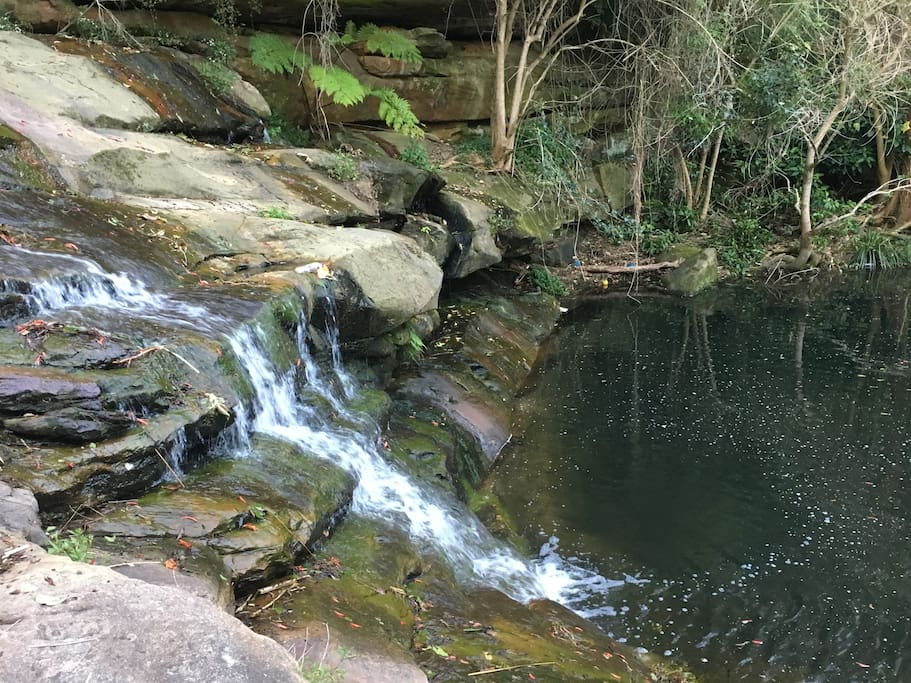 waterfall with water dragons