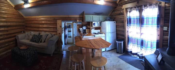 100 year old Cabin sleeps 6 in Paradise Valley MT!