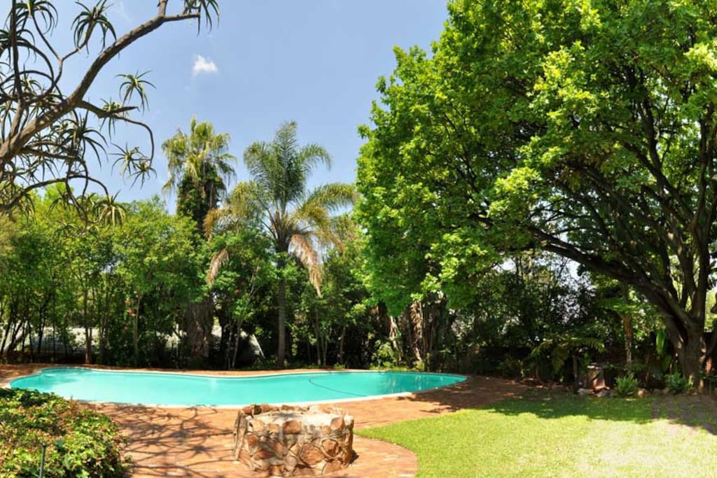 In warmer seasons Kia Ora offers you a sparkling pool to cool of and relax in