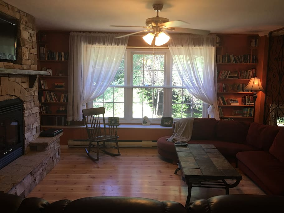 Cosy living room with propane fireplace and books.