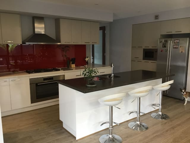 Modern kitchen for your use