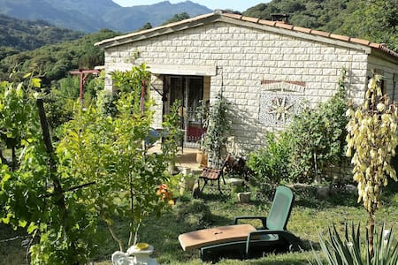 gîte région d'Ajaccio - Forciolo