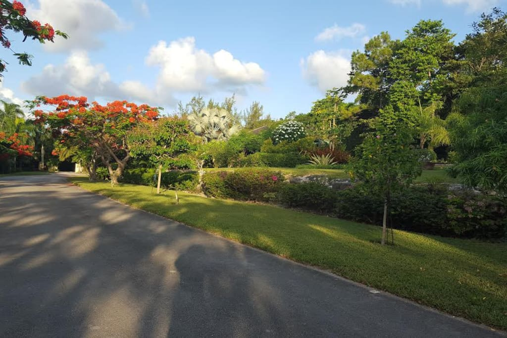 Tropical Gardens surround your secret villa