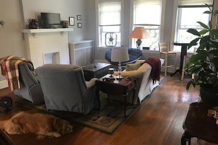 Spacious two bedroom in beautiful Hyde Park