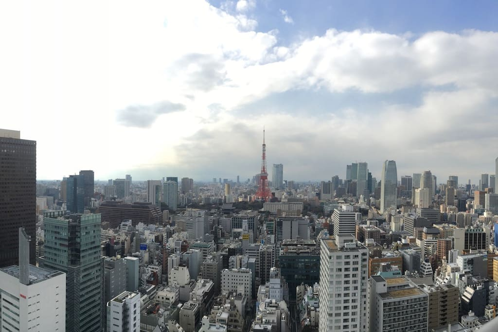 you can see the Tokyo Tower from bottom to top!