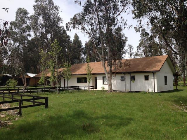 Habitaciónes en Casa de campo Los Nonnos - Pelarco - Другое