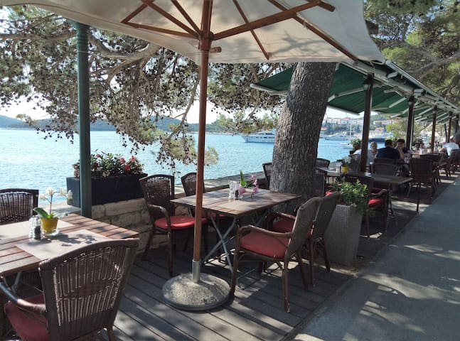 Breakfast by the sea shore, under the old pine trees, every morning  served - only few steps from the Apartment Korcula town.