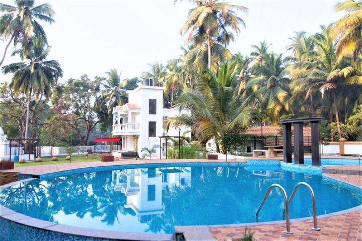 Premium 1 BR Apartment Near Baga Beach