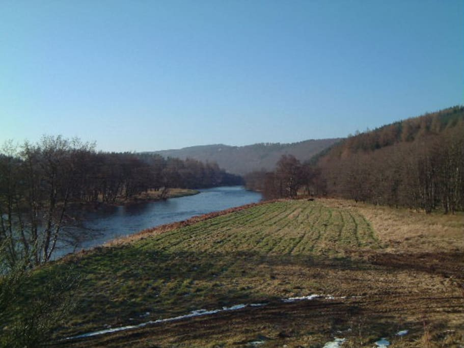 View up the River Spey
