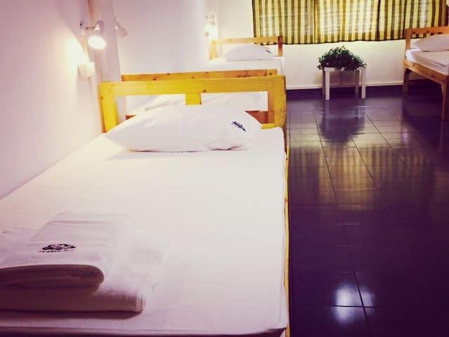 舒适空调全下铺7人间(中文服务)曼谷树青旅TreeHostel - Bangkok - House