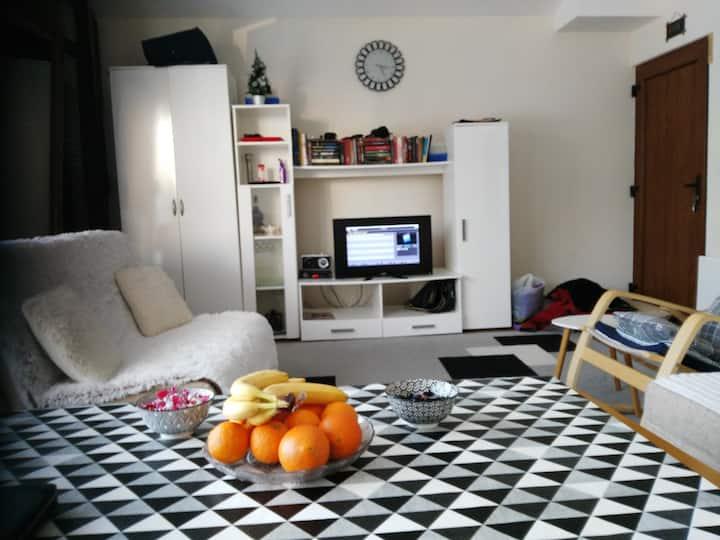 Vlašić-Mirza apartman