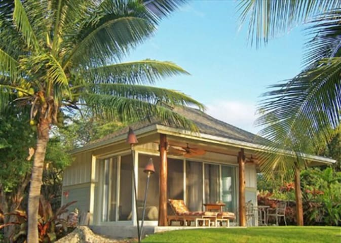 The Palm Bungalow- Luxurious Studio Hale in Kona!