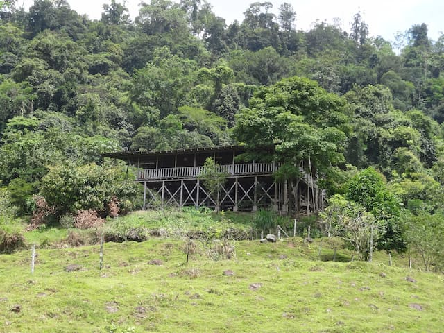 Finca el Gallo - Siquirres - Natur-Lodge