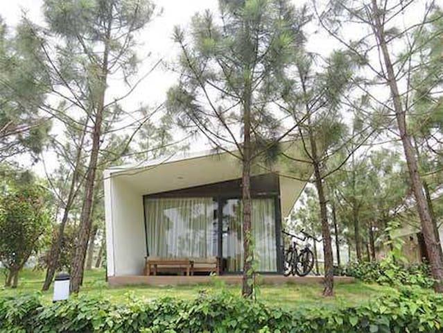 Flamingo Đại Lải Resort - Forest Villa