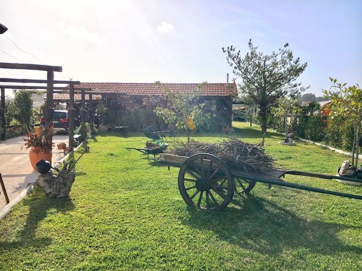 Quinta da Colmeia - The place to relax