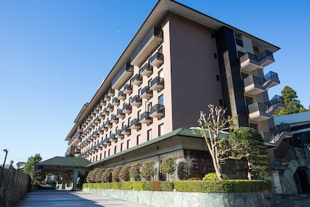 The Hedistar Hotel Narita Bed and Breakfast - Narita-shi