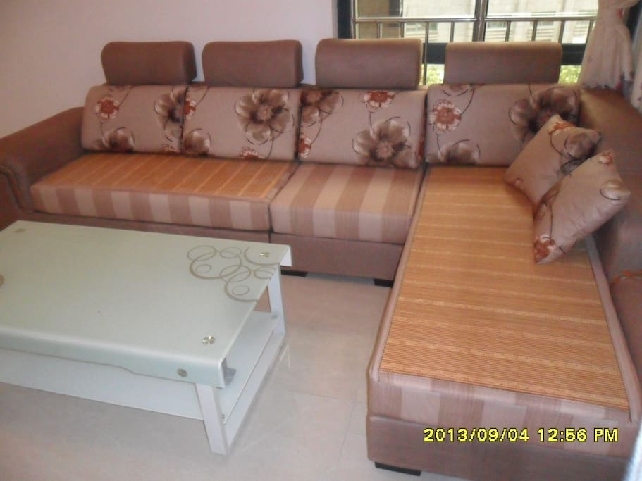 Sofa in Living room客厅沙发