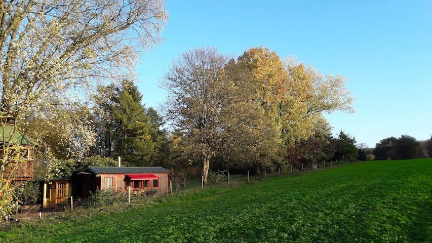 """Tiny-House: """"Schäferwagen"""" mit eigener Sauna"""