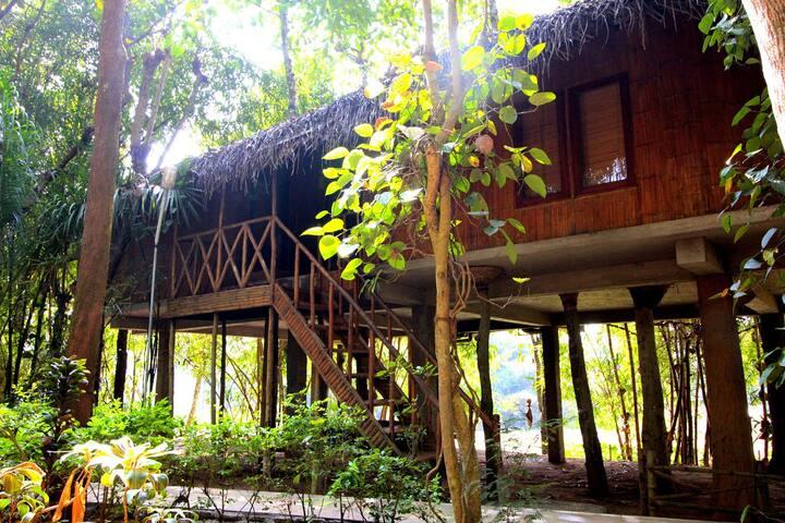 Tree Cottage in Wayanad, Kattikulam