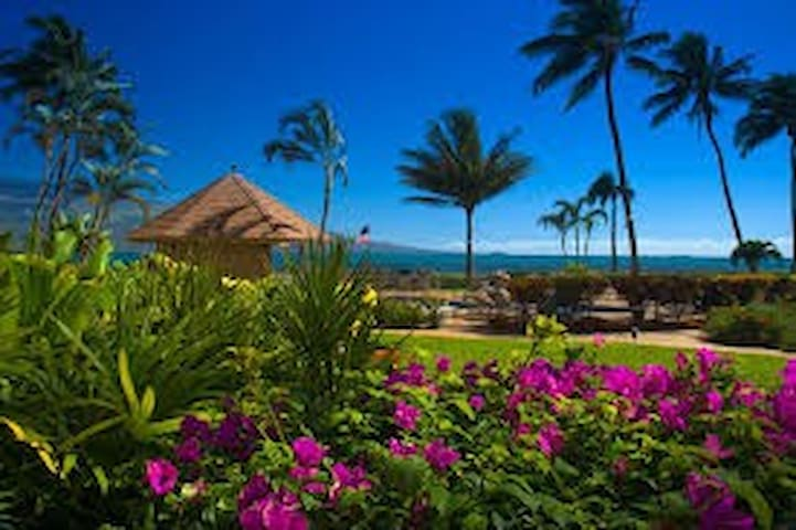 Spectacular Maalaea Bay Upscale Vacation Rental