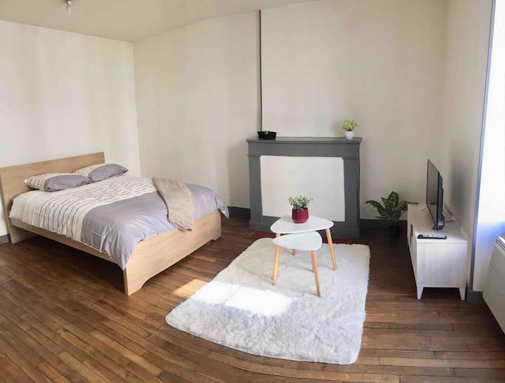 Appartement T1 Bis Poitiers Centre Ville