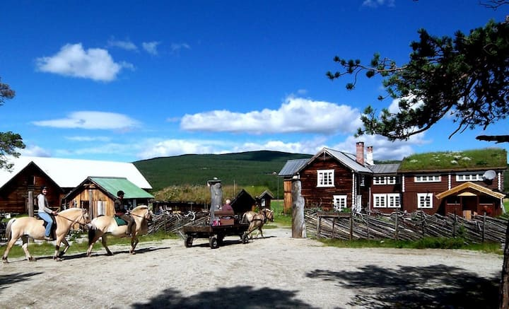 Kvebergsøya Gård B&B, farm w/horses