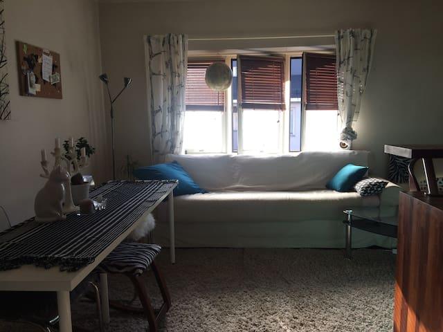 Sunny flat in Oslo's boho East side