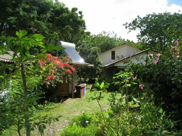 Ecohostal Taniera~ Habitación Doble