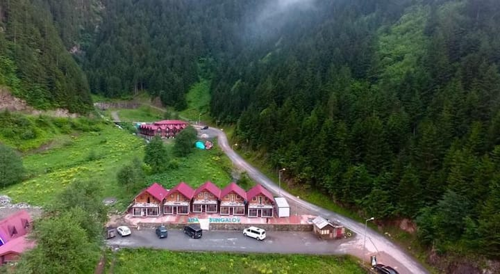 Uzungol awesom cottages in the wonderful nature