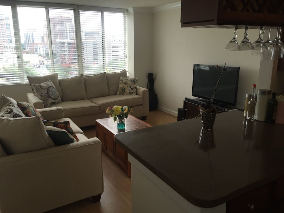 Pentagon City 1 Bedroom Apt Next To Mall And Metro Apartments For Rent In Arlington Virginia