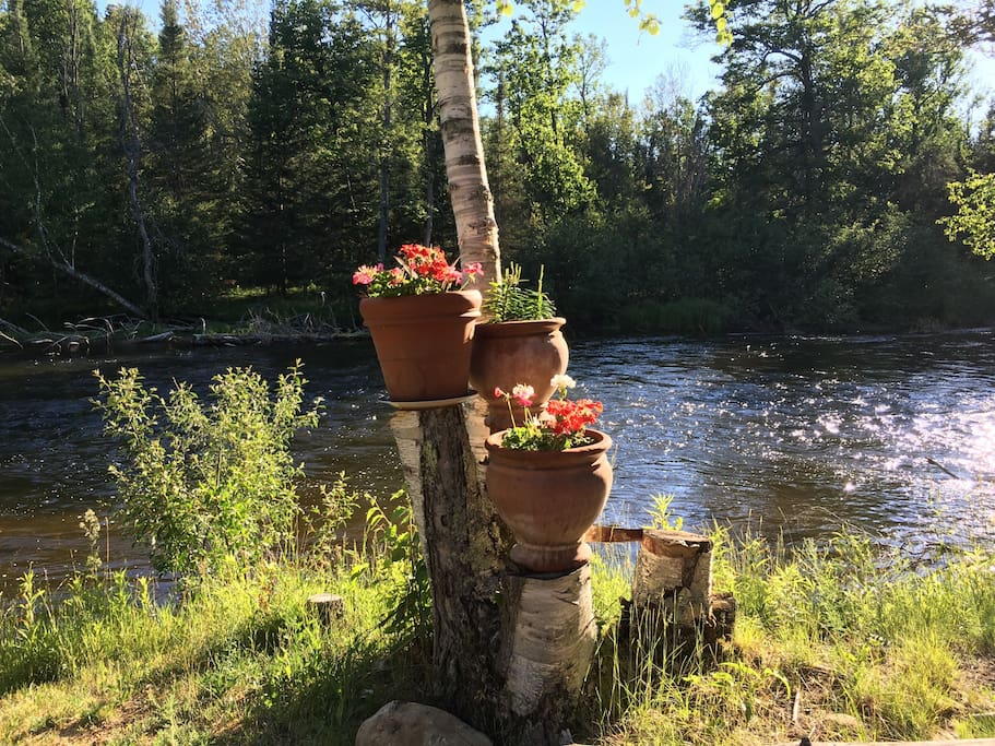 Cabins 10ft from the ausable river cottages for rent in for Fishing cabins in michigan