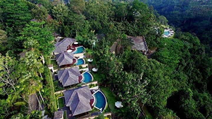 Jungle Paradise 1 Bedroom Villa with Infinity Pool