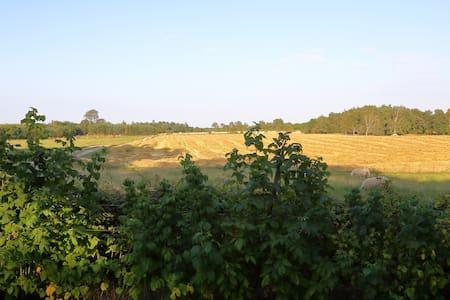Værelse (nr1) på stemningsfuld gård - Kjellerup