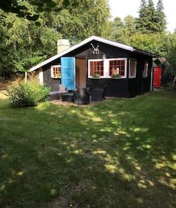 Hyggeligt sommerhus i Skæring...