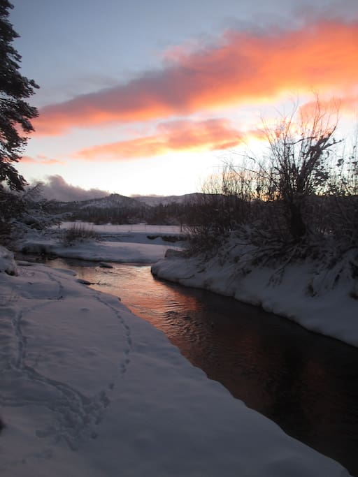 Trout and Truckee River within walking distance