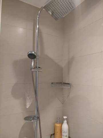 上有淋浴,也可切換蓮蓬頭使用
