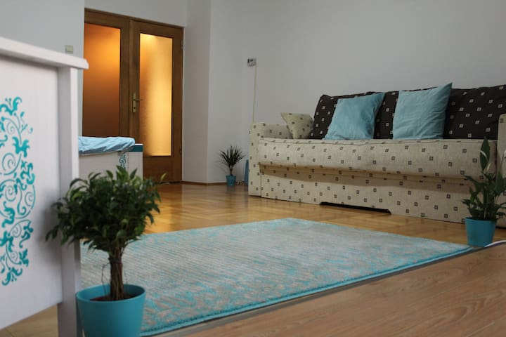 Charming studio with all facilities - Brașov - Leilighet