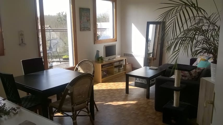Appartement 51m2 calme et lumineux avec balcon - Sainte-Geneviève-des-Bois - Flat