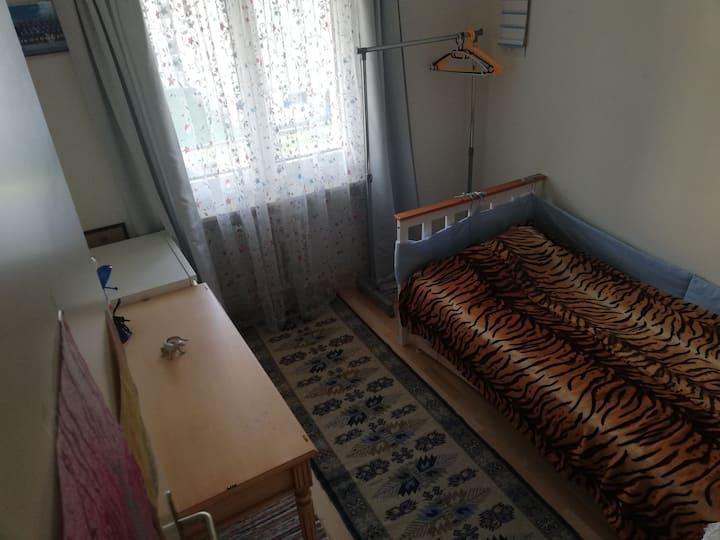 Уютная, комната. В Швейцарии, в Арбон.