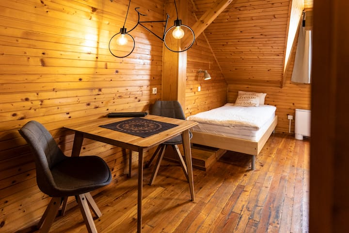 Apt. Borst,near Kranjska gora, mountain view,apt.4