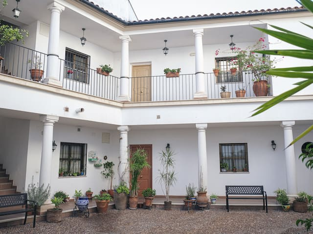 San Lorenzo 12 Apartament