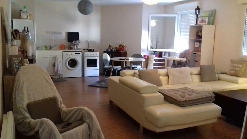 Jolie chambre chaleureuse  dans t3 - Pompertuzat - Apartamento