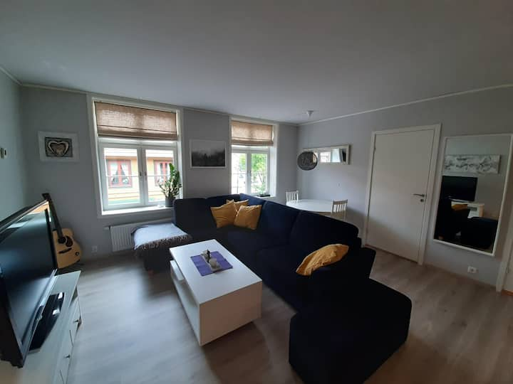 Beautiful modern apartment in the city centre
